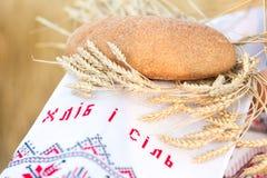 Mulher que guarda a grão de pão Imagem de Stock Royalty Free