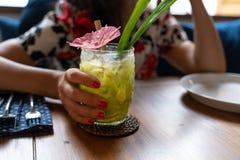 Mulher que guarda o cocktail tropical da cor verde em um vidro de cocktail transparente do estilo do tiki fotografia de stock
