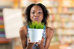 Mulher que guarda a planta no vaso Imagem de Stock Royalty Free