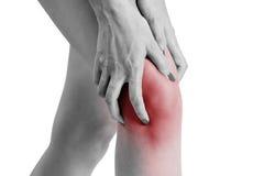 A mulher que guarda seu joelho com vermelho destacou na área da dor Fotografia de Stock