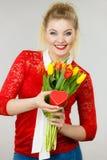 Mulher que guarda tulipas e presente Foto de Stock