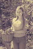 Mulher que guardara a cesta com flores Foto de Stock Royalty Free