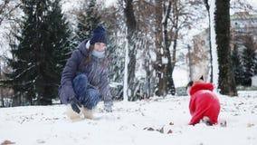Mulher que joga com o cão do pug do divertimento no parque nevado Cão vestido como Santa Claus fora no dia gelado Conceito do ano vídeos de arquivo