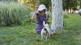 Mulher que joga com o cão na grama filme