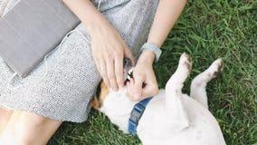 Mulher que joga com o cão na grama video estoque