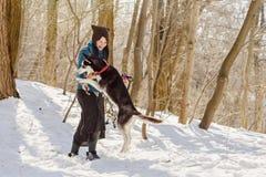 Mulher que joga com seu cão ronco na neve Fotos de Stock Royalty Free