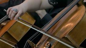 Mulher que joga o violoncelo video estoque