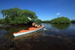Mulher que kayaking no parque nacional de Biscayne, Florida fotografia de stock