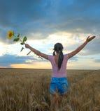 Mulher que levanta as mãos ao admirar um por do sol bonito fotografia de stock