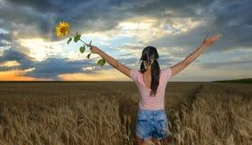 Mulher que levanta as mãos ao admirar um por do sol bonito fotografia de stock royalty free