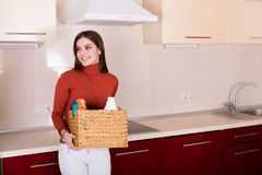 Mulher que limpa sua cozinha Imagem de Stock Royalty Free
