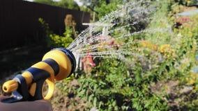 Mulher que molha o sistema de extinção de incêndios manual do jardim do jardim vídeos de arquivo