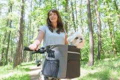 Mulher que monta uma bicicleta com seu cão Imagem de Stock Royalty Free