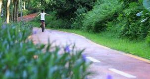 Mulher que monta uma bicicleta na fuga ensolarada do parque com os braços estendido video estoque