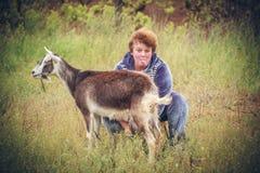 Mulher que ordenha uma cabra Foto de Stock Royalty Free