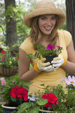 Mulher que planta flores em seu jardim foto de stock