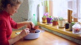 Mulher que planta sementes em um potenciômetro filme