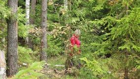 Mulher que recolhe cogumelos na natureza do outono da floresta video estoque