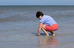 Mulher que recolhe shell na ressaca no Golfo do México Foto de Stock