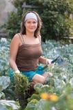 Mulher que remove ervas daninhas do jardim vegetal Fotos de Stock Royalty Free