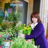 Mulher que seleciona flores frescas no mercado parisiense Fotografia de Stock Royalty Free