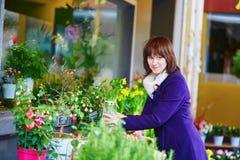 Mulher que seleciona flores no mercado parisiense Foto de Stock Royalty Free