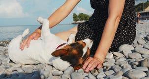 Mulher que senta-se além de seu Jack Russell no cais que olha ao mar video estoque