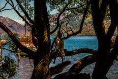 Mulher que senta-se na árvore acima da baía bonita imagem de stock