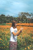 Mulher que toma imagens do campo do cravo-de-defunto Ilha de Bali foto de stock royalty free