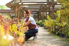 Mulher que trabalha no Garden Center Fotos de Stock Royalty Free