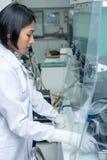 Mulher que trabalha no laboratório Fotos de Stock