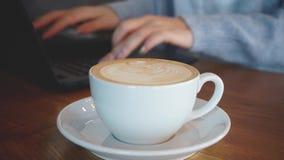 Mulher que trabalha no portátil e no café da bebida vídeos de arquivo