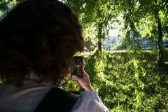 Mulher que usa o smartphone para capturar o por do sol bonito no parque fotografia de stock royalty free