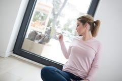 Mulher que usa o tablet pc com os gatos na neve no fundo Imagem de Stock Royalty Free