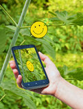 Mulher que usa o telefone esperto móvel no parque Tecnologia e gracejos Imagens de Stock