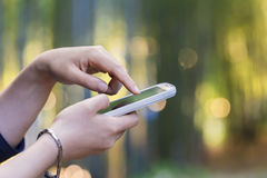 Mulher que usa seu telefone na floresta no sol para baixo Foto de Stock Royalty Free