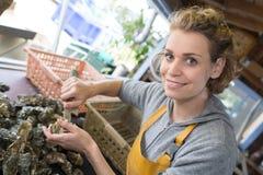 Mulher que vende ostras frescas no mercado do alimento dos fazendeiros fotos de stock royalty free