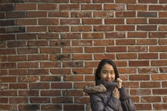 Mulher que veste um revestimento durante o inverno na cidade Fotos de Stock Royalty Free