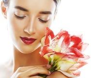 Mulher real moreno bonita nova com fim vermelho da amarílis da flor imagens de stock royalty free