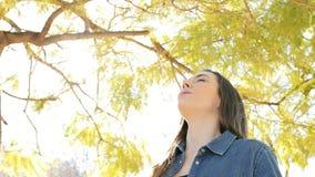 Mulher relaxado feliz que respira o ar fresco em um parque vídeos de arquivo