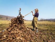 Mulher sênior com um ancinho Fotografia de Stock Royalty Free
