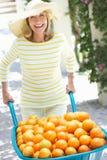 Mulher sênior que empurra o Wheelbarrow F Fotografia de Stock Royalty Free