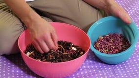 A mulher seleciona feijões pela cor vídeos de arquivo