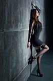 Mulher 'sexy' nova Fotografia de Stock Royalty Free