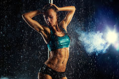 Mulher 'sexy' nova Foto de Stock