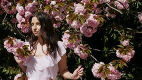 Mulher 'sexy' nova que está no vestido cor-de-rosa ao lado de sakura filme