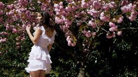 Mulher 'sexy' nova que está no vestido cor-de-rosa ao lado de sakura vídeos de arquivo