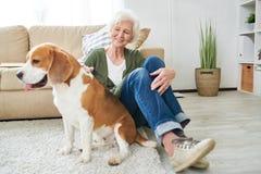 Mulher superior feliz que joga com cão em casa imagem de stock