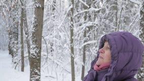 Mulher superior que sorri e que admira a floresta do inverno coberta com a neve fresca vídeos de arquivo