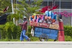 Mulher tailandesa das vendas Imagem de Stock